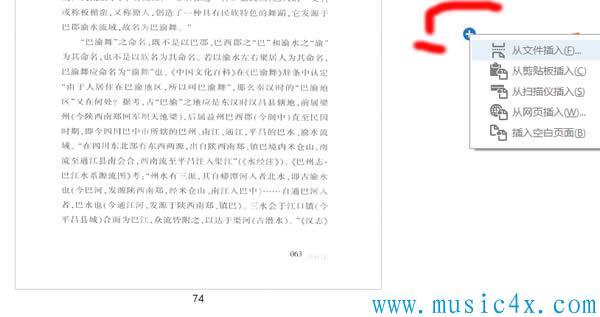 插入PDF